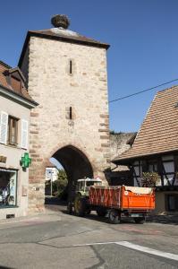2017-07-04 - En del av vinvägen i Alsace - © Göran Waldt